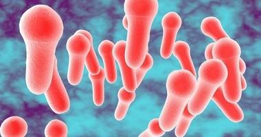 Błonica – objawy, diagnostyka, leczenie i profilaktyka