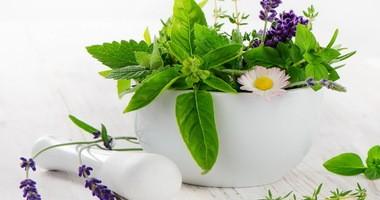 Rośliny lecznicze w kosmetykach