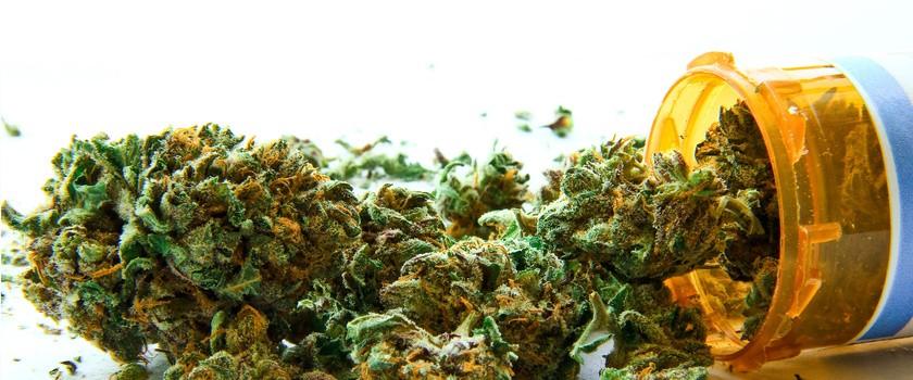 Projekt ustawy legalizującej medyczne stosowanie marihuany