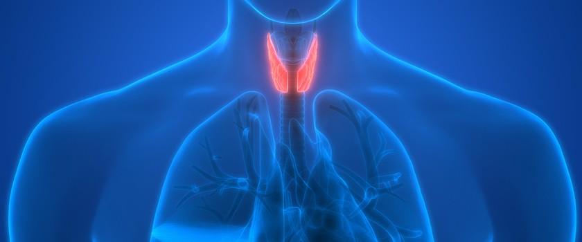 Niedoczynność tarczycy – przyczyny, objawy, badania, leczenie hipotyreozy
