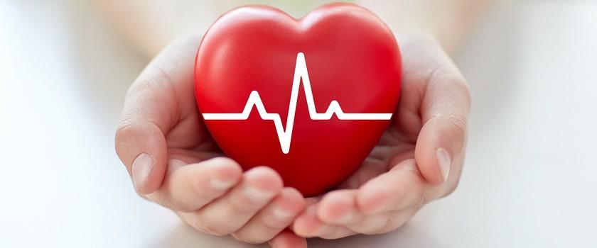 Badania nad polskimi protezami serca na ostatniej prostej