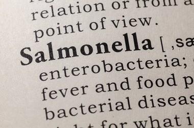 Jakie choroby mogą wywołać bakterie Salmonella? W jaki sposób dochodzi do zakażenia?