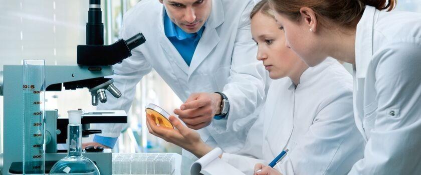 Pneumokoki – niebezpieczne bakterie