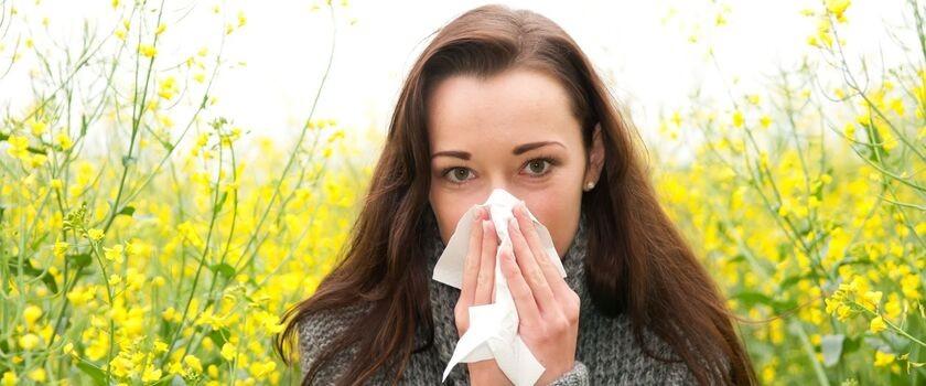 Pyłki zmorą alergików