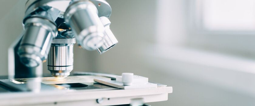 Odkrywca mechanizmów autofagii z medycznym Noblem