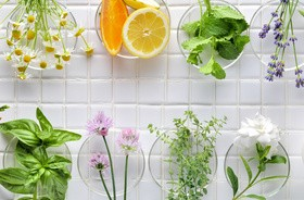 Leczymy ziołami choroby układu krążenia