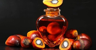 Olej palmowy – czy jest zdrowy? Właściwości, zastosowanie i szkodliwość oleju palmowego