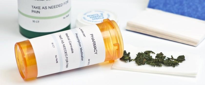 Zakaz prowadzenia terapii z użyciem konopi
