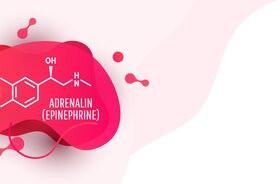 Adrenalina – jaka jest funkcja w organizmie? Czym skutkuje nadmierna ekspozycja na działanie hormonu?