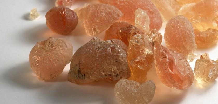 Guma arabska (E414) – właściwości i zastosowanie. Jak guma akacjowa wpływa na zdrowie?