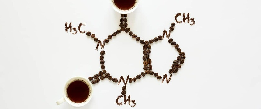 Kofeina – właściwości i zastosowanie. Jak wpływa na organizm?