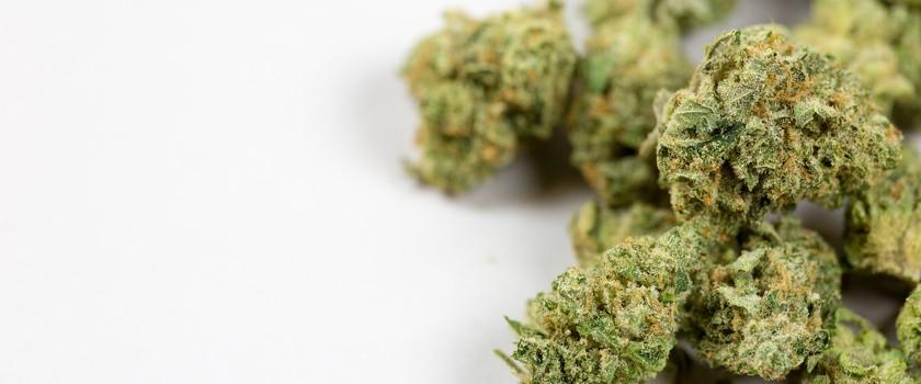 Medyczna marihuana pomaga dzieciom z autyzmem