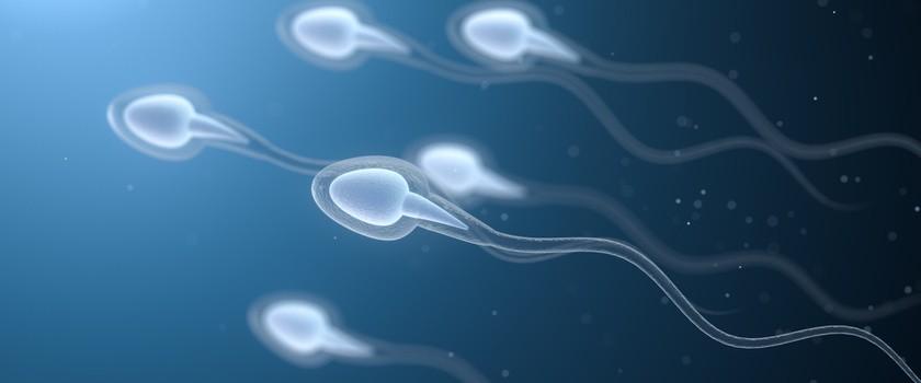 Badanie nasienia (seminogram), czyli sprawdzanie płodności u mężczyzn