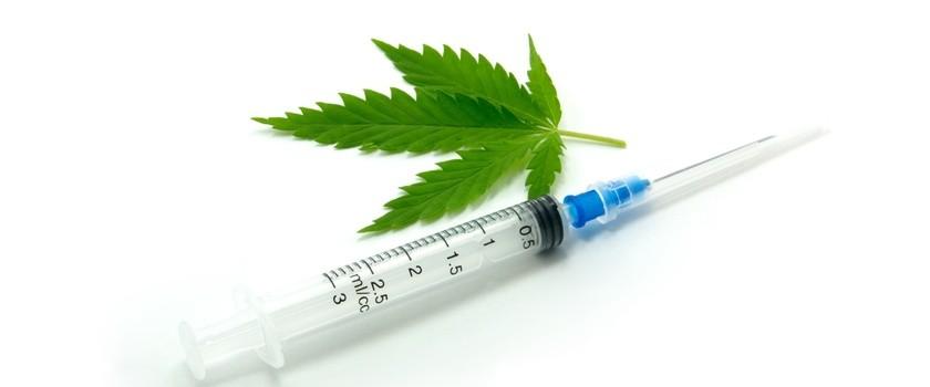 Medyczne zastosowania marihuany