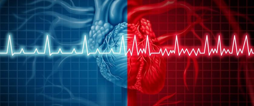 Specyficzne komórki łożyska mogą regenerować serce po ataku