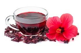 Hibiskus – skład, właściwości, zastosowanie i herbata z kwiatu hibiskusa