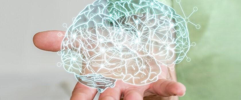 Długotrwały stres niszczy nasz mózg