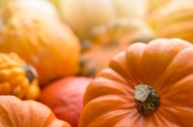 Dynia – warzywo dla zdrowia i urody