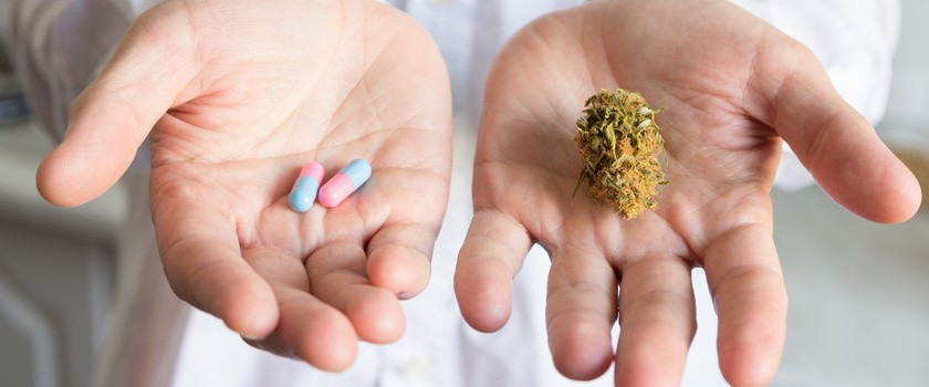 Szansa na bezpieczne środki przeciwbólowe na bazie marihuany