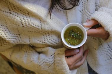 Zioła na przeziębienie – które naprawdę działają?