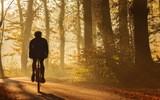Rower - idealny sport na wiosnę