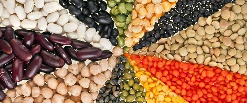 Myślisz o diecie proteinowej? Dowiedz się więcej o białku w diecie