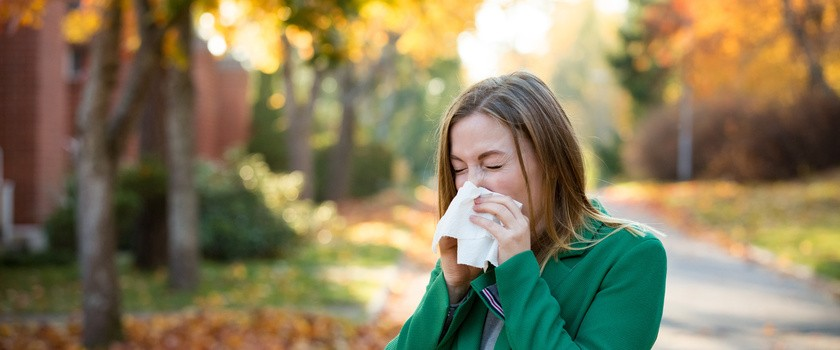 Jakie leki na alergię? Wspomaganie farmakologiczne w czasie alergii sezonowej