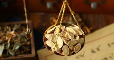 Adaptogeny – Traganek błoniasty –  właściwości lecznicze herbaty z korzenia Astragalus membranaceus