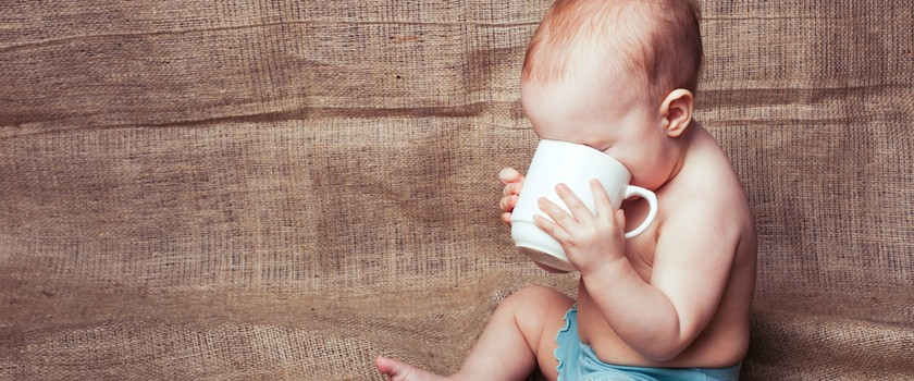 Herbatka z kopru włoskiego dla niemowląt i dorosłych – właściwości, działanie i przeciwwskazania