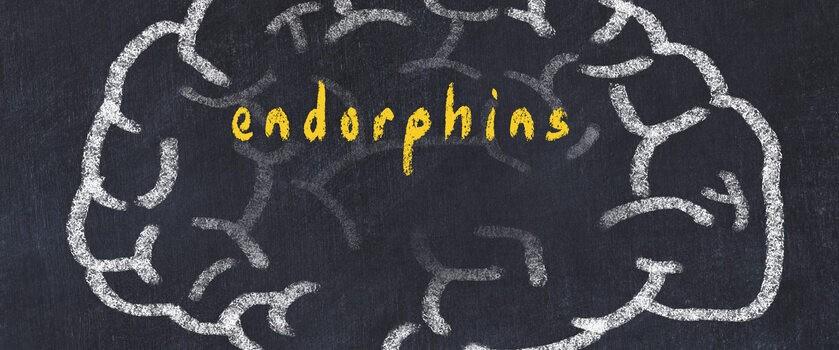 Czym są endorfiny i jakie funkcje pełnią w organizmie? Jak podnieść ich poziom w organzmie?