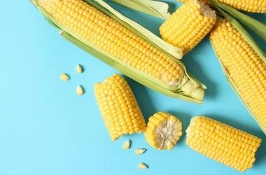 Kukurydza – charakterystyka, wartości odżywcze i właściwości. Zdrowe przepisy z kukurydzą