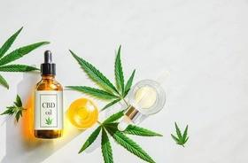 Kannabidiol (CBD) – jakie ma właściwości? Jak stosować olejek konopny?