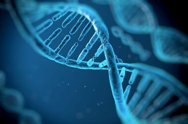 DNA neandertalczyków wpływa na nasz obecny stan zdrowia