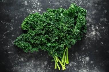 Jarmuż – wartości odżywcze, właściwości, przepisy. Dlaczego warto go jeść?