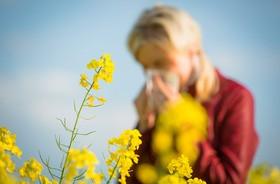 Skąd się biorą alergie?