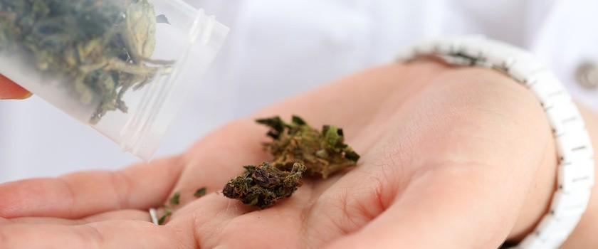 Leki z marihuaną mogą być tańsze