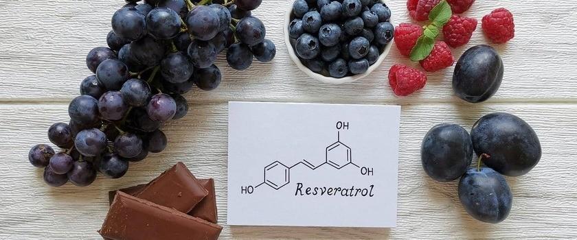 Resweratrol – czym jest i jak działa? Gdzie występuje i jak wpływa na zdrowie?