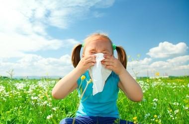 Marsz alergiczny, alergie krzyżowe – co nas uczula?
