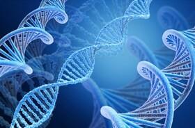 """""""Śmieciowe DNA"""" – czy jest kluczem do powstrzymania procesów starzenia się i nowotworzenia?"""