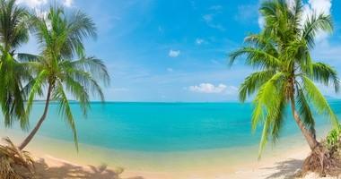 Urlop w tropikach