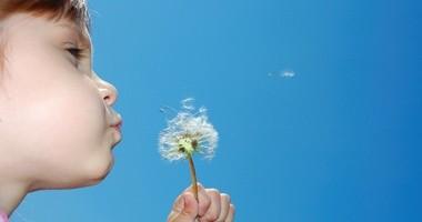 Najczęściej uczulające alergeny