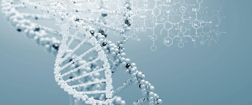Bakterie jelitowe mogą komunikować się z naszym DNA