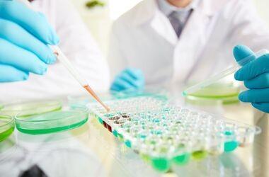 Wykryłeś przeciwciała HCV i co dalej?