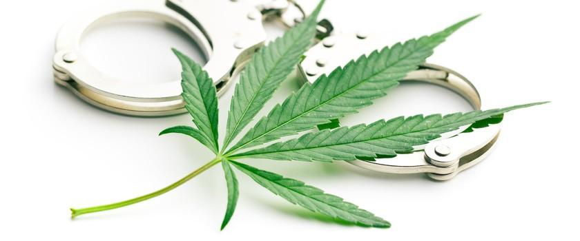 Legalna marihuana dla śmiertelnie chorych pacjentów z Nowej Zelandii