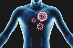 Odkryto nieznany dotąd mechanizm chroniący przed wirusowymi infekcjami płuc
