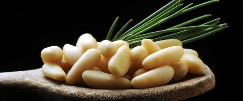 Orzeszki pinii (orzechy piniowe, piniole) – właściwości, wartości odżywcze, zastosowanie