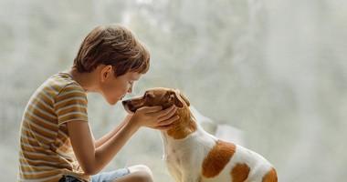U pacjentów z Malezji wykryto psiego koronawirusa. Czy mamy się czego obawiać?