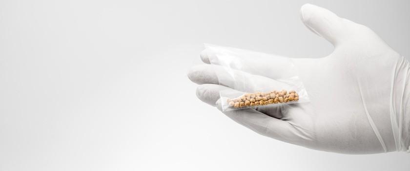 Kamica żółciowa – przyczyny i objawy. Jak wygląda leczenie kamicy pęcherzyka żółciowego?