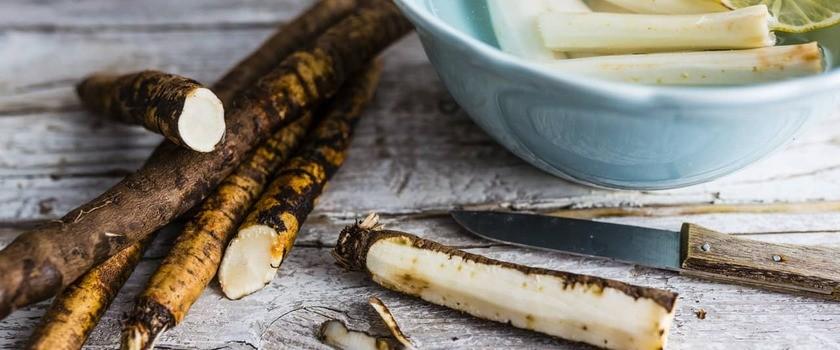 Skorzonera – co to za warzywo? Wartości odżywcze, właściwości i zastosowanie wężymordu