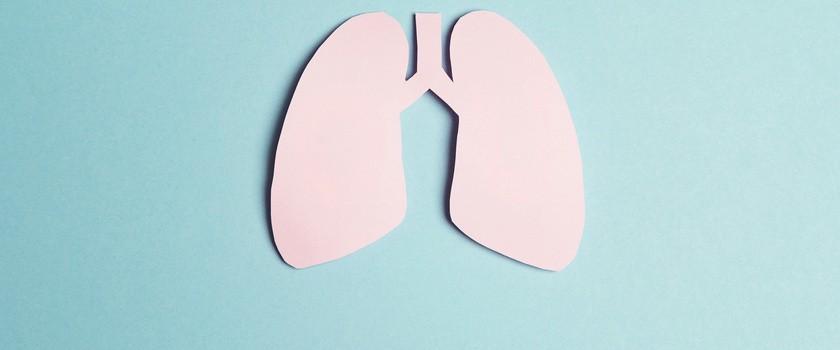 Nowy sposób na zwiększenie puli organów do transplantacji